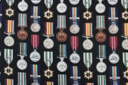 campain and service medals